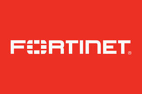 fortinet-100